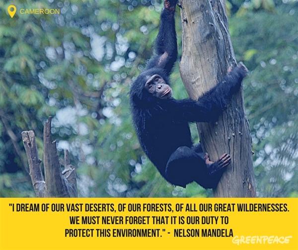 Mandela Day quote 1b