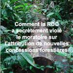 Rapport : Comment la RDC a secrètement violé le moratoire sur l'attribution de nouvelles concessions forestières