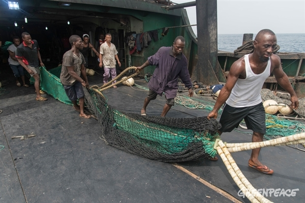 the crew pulling out nets