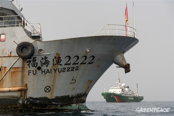 fuyuyuan 2222 and esperanza