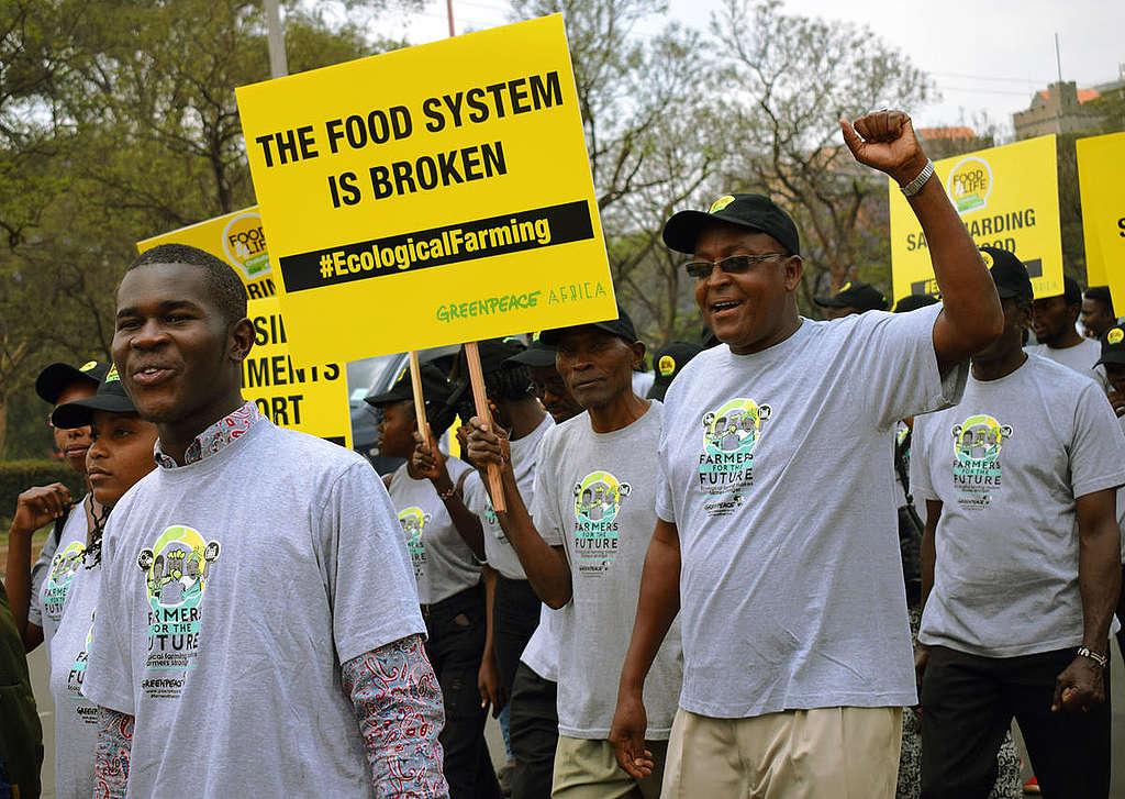 World Food Day 2018 in Kenya. © Paul Basweti