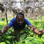 Voici pourquoi le gouvernement doit soutenir l'agriculture écologique