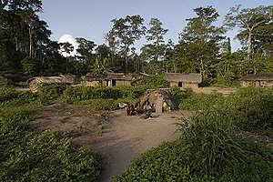 Baka Pygmy Village in Africa. © Markus Mauthe / Greenpeace