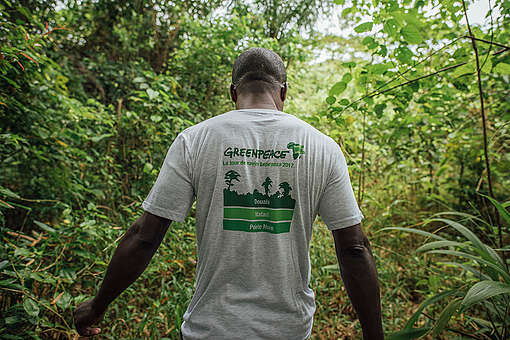 Save #EboForest!