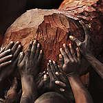 CAFI et l'attribution illégale de concessions forestières en RDC
