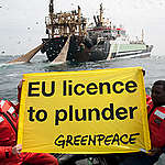 My Endless Adventure with Greenpeace Africa