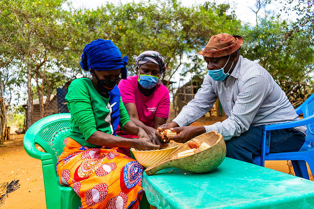 Ecological Farming in Kenya. © Greenpeace / Paul Basweti