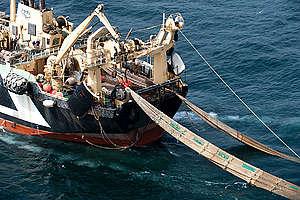 The Margiris KL749 Super Trawler near Mauritania. © Pierre Gleizes / Greenpeace