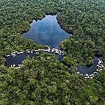 La levée du moratoire de la RDC sur les nouvelles concessions forestières serait une catastrophe pour les droits humains et le climat, avertissent Greenpeace Africa et la Rainforest Foundation UK et Rainforest Foundation Norway
