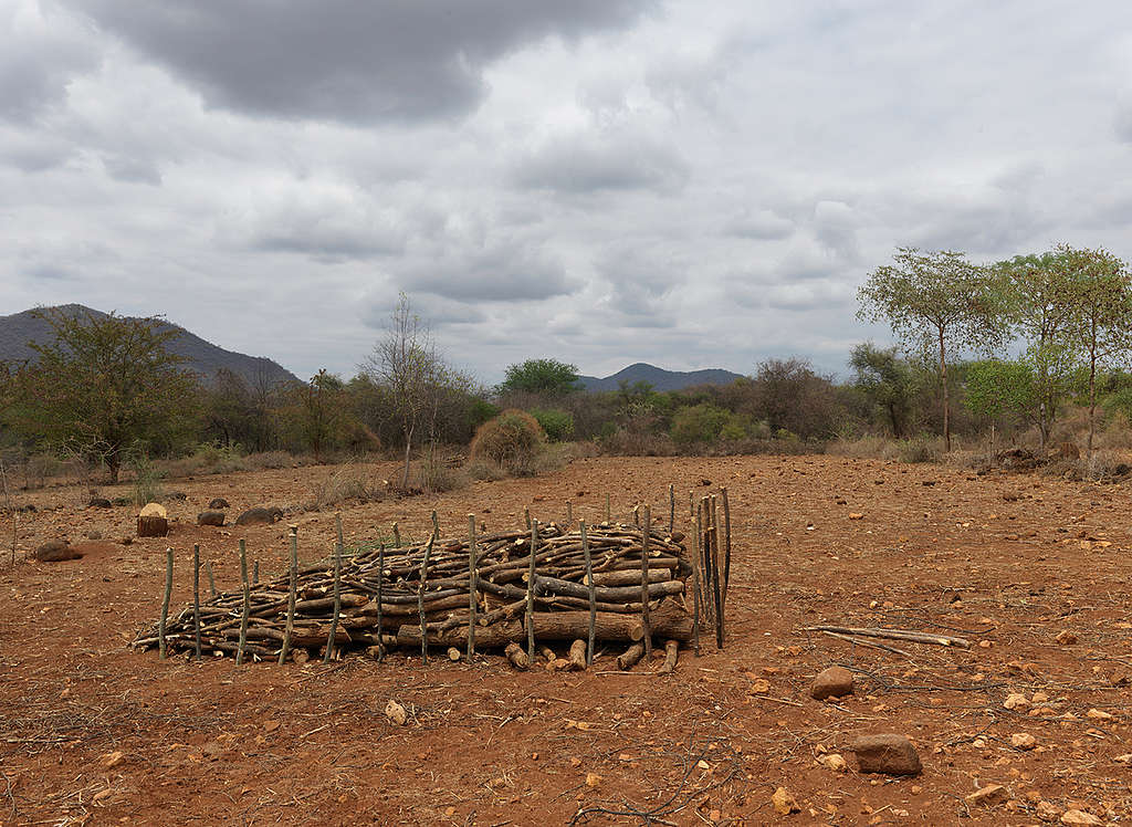 Dried up Land in Kenya. © Peter Caton / Greenpeace