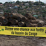 L'Union africaine exhortée à discuter l'exploitation forestière au Congo qui provoque des événements météorologiques extrêmes en Afrique subsaharienne