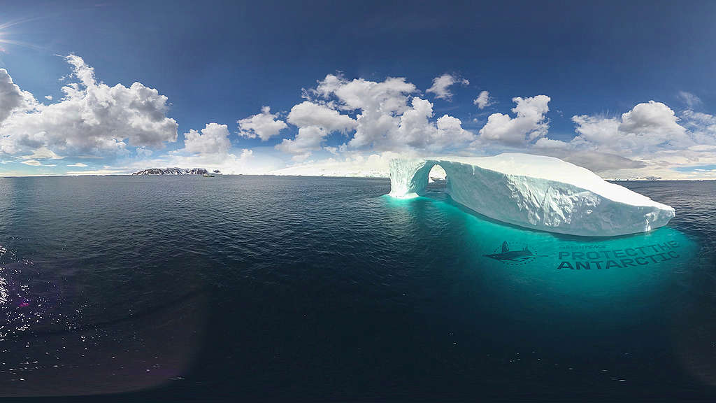 Beautiful Zoom background images by Greenpeace