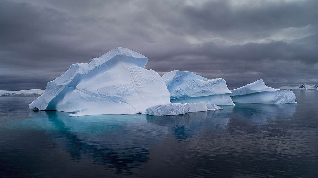 Icebergs in Charlotte Bay, Antarctic Peninsula. Greenpeace is conducting scientific research and documenting the Antarctic's unique wildlife, to strengthen the proposal to create the largest protected area on the planet, an Antarctic Ocean Sanctuary.  © Christian Åslund / Greenpeace