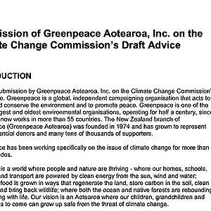 Greenpeace Aotearoa submission on the Climate Change Commission's Draft Advice