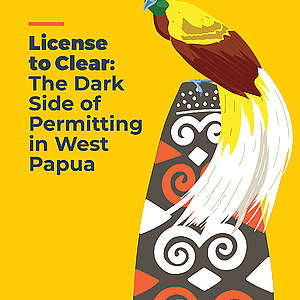 Licence to Clear: The Dark Side of Permitting in West Papua