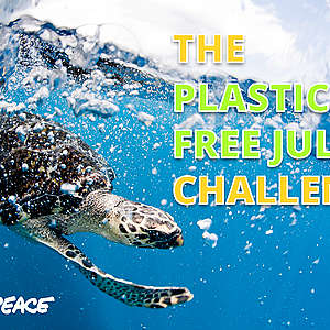 Seven ways to go plastic free for Plastic Free July