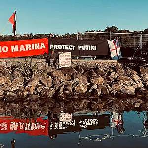 Greenpeace calls on police to protect peaceful Pūtiki protectors from more violence