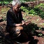 """""""Se beneficia el suelo, bajás los costos y mejorás la calidad del alimento"""""""