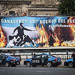 Greenpeace responsabilizó al sector agropecuario por los incendios en el país