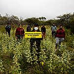 """Greenpeace: """"El Acuerdo de Escazú brindará herramientas efectivas para la protección de los líderes ambientales"""""""