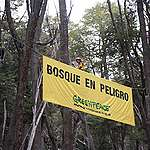 Carta de Greenpeace a la gobernadora de Río Negro por proyecto urbanístico sobre la ladera del Cerro Perito Moreno
