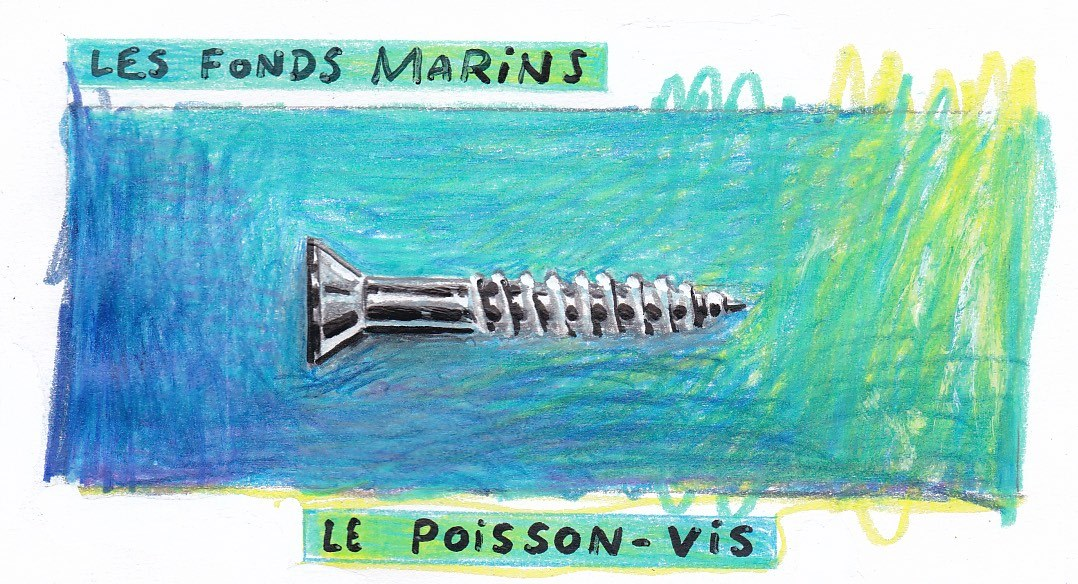 © Yohan De Moor - Poisson Vis