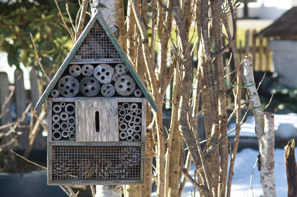 Doe-het-zelf: zo maak je een bijenhotel
