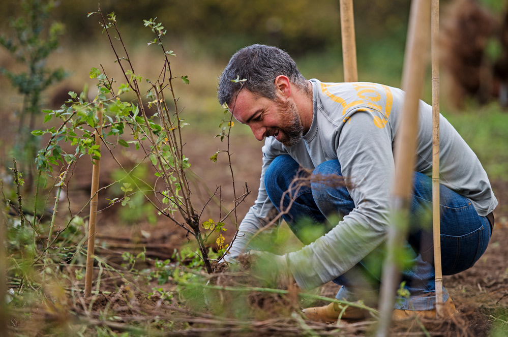 Droogte: tips en trucs om water te besparen in de tuin