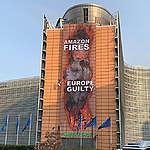 Action au Berlaymont : «l'Europe est complice des incendies en Amazonie»