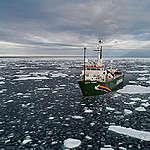 Péril dans l'Arctique : l'étendue de la banquise atteint un nouveau minimum historique
