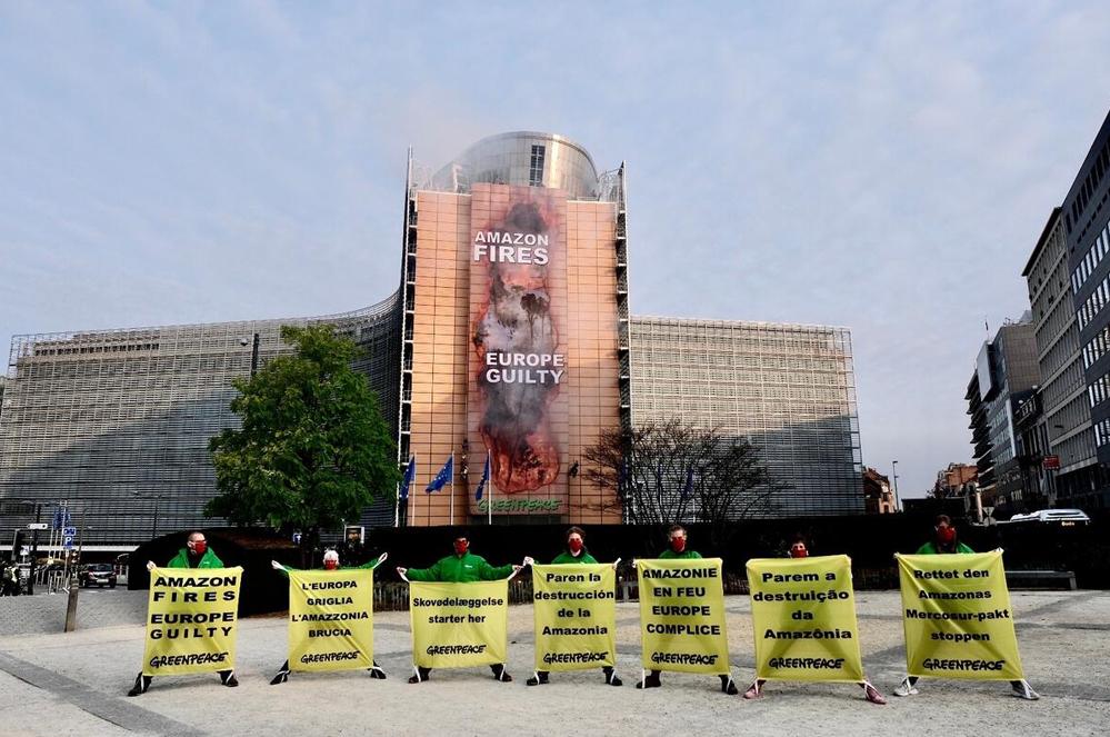 [ACTIE]: Eis een sterke Europese wet tegen ontbossing