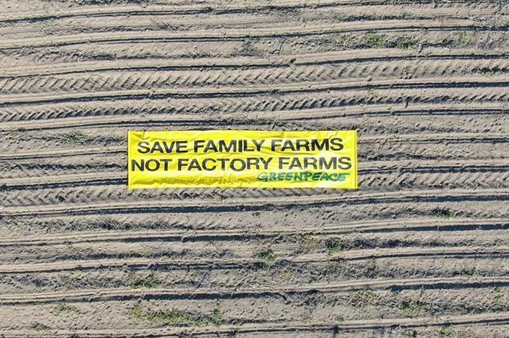 6 raisons de l'échec de la nouvelle politique agricole de l'UE