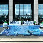 Actions dans le Pacifique et à Bruxelles : Greenpeace ramène le fond des océans devant chez le ministre Van Quickenborne