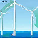 La nature dans les parcs éoliens offshore