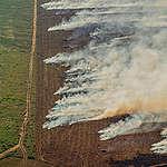 Bosbranden: seizoen begint met recordaantal hotspots in Amazonewoud