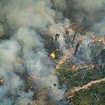 La forêt amazonienne en feu : Greenpeace partage de nouvelles photos aériennes