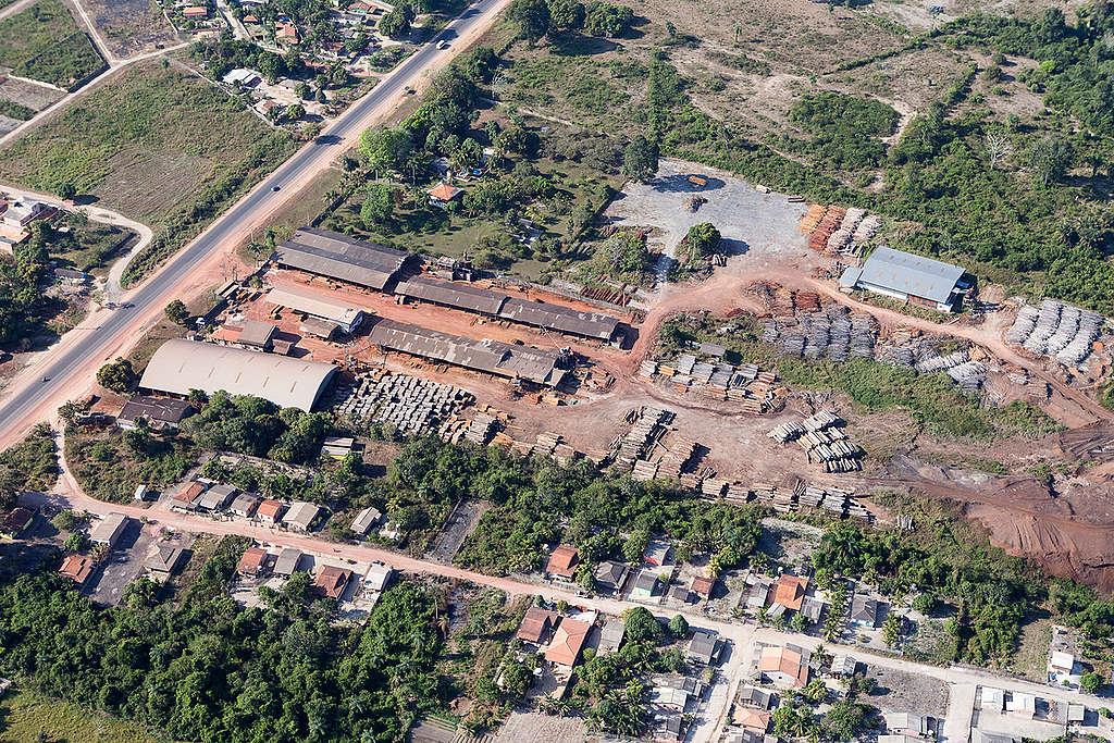 Extração ilegal de madeira em Santarém, PA.