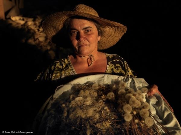 Produtora de alimentos agroecológicos no Brasil