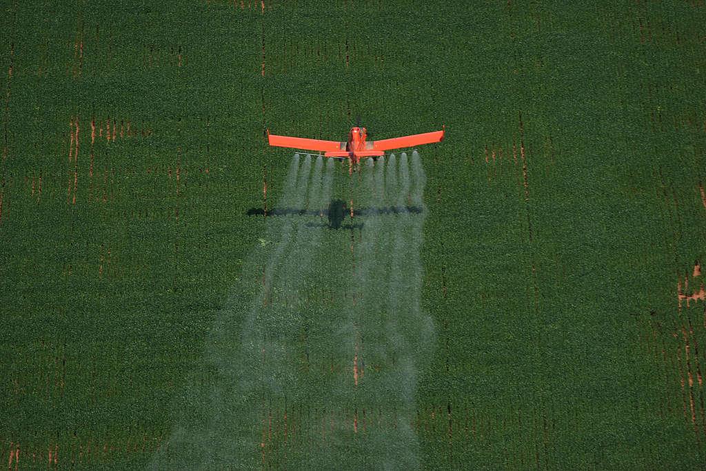 Avião pulveriza área agrícola no Brasil