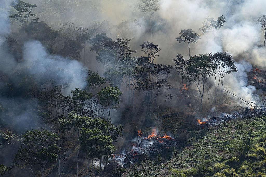 Forest Fires in Brazilian Amazon 2018. © Daniel Beltrá