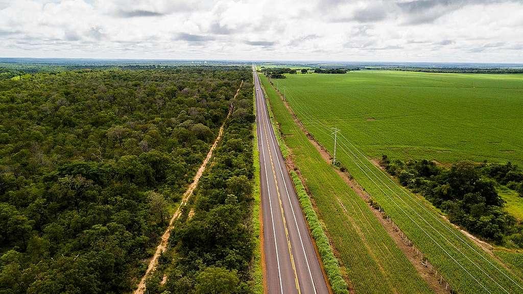 A região entre os estados do Maranhão, Tocantins, Piauí e Bahia, conhecida como MATOPIBA, é considerada a vitrine do agronegócio brasileiro. Mas esse modelo vem acelerando o desmatamento no Cerrado.