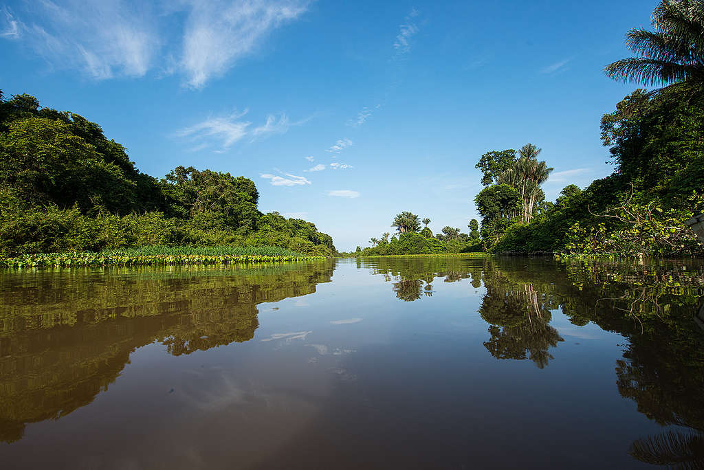 Tapajós River in the Amazon Rainforest. © Valdemir Cunha
