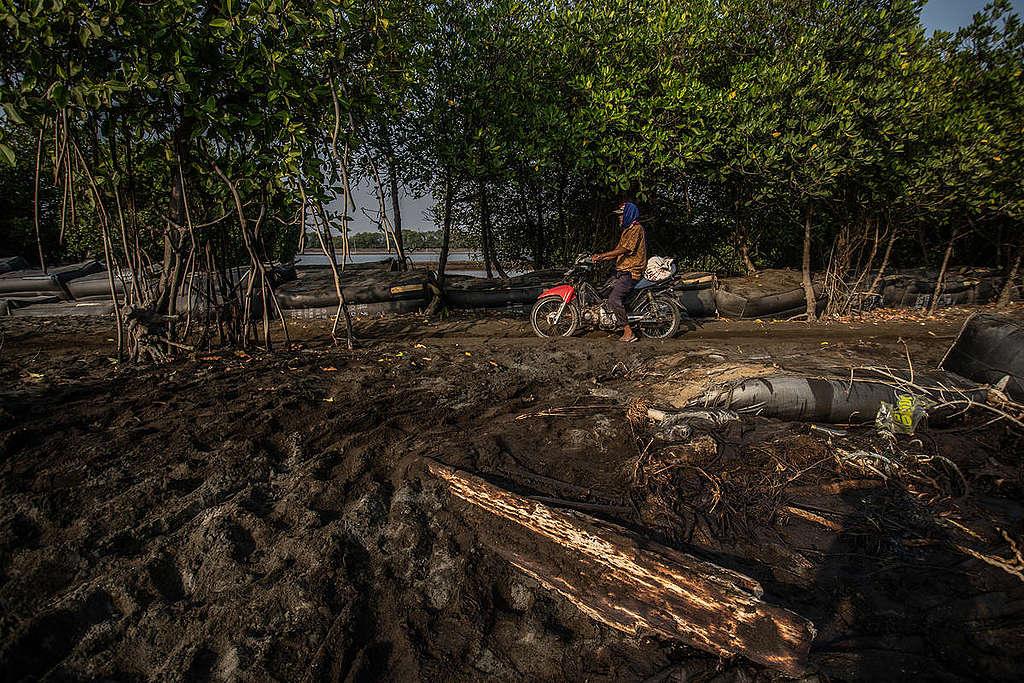 Oil Spill in Karawang, West Java. © Jurnasyanto Sukarno / Greenpeace