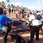 pessoas tirando petróleo de praia em Recife