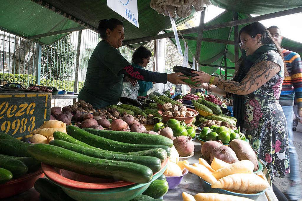 mulher compra frutas e legumes de uma mulher feirante