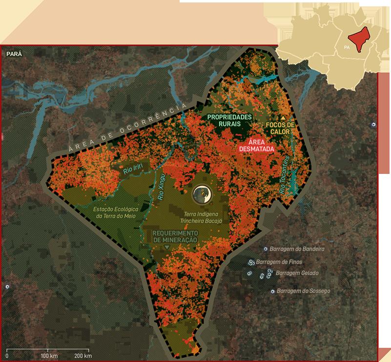 Mapa Arara-azul