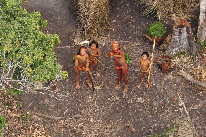Grupo de indígenas isolados sente-se ameaçado diante de avião que sobrevoa acampamento feito por eles na floresta Amazônica