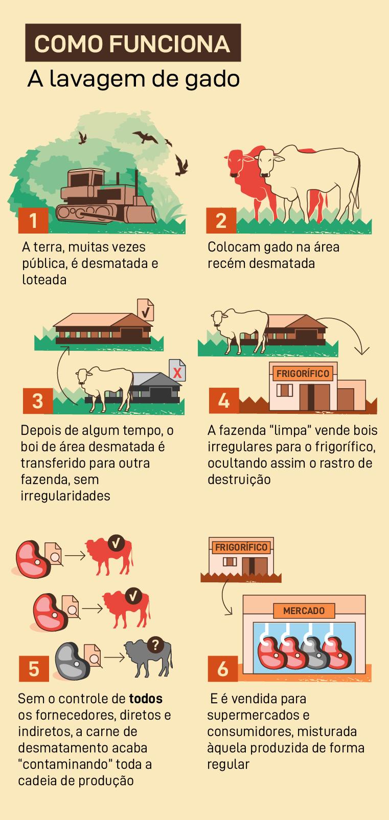 Como funciona a lavagem de gado