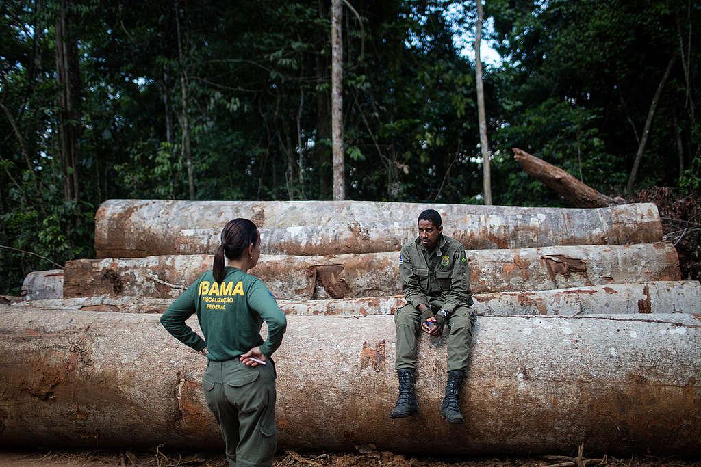 servidores do ibama na floresta amazônica