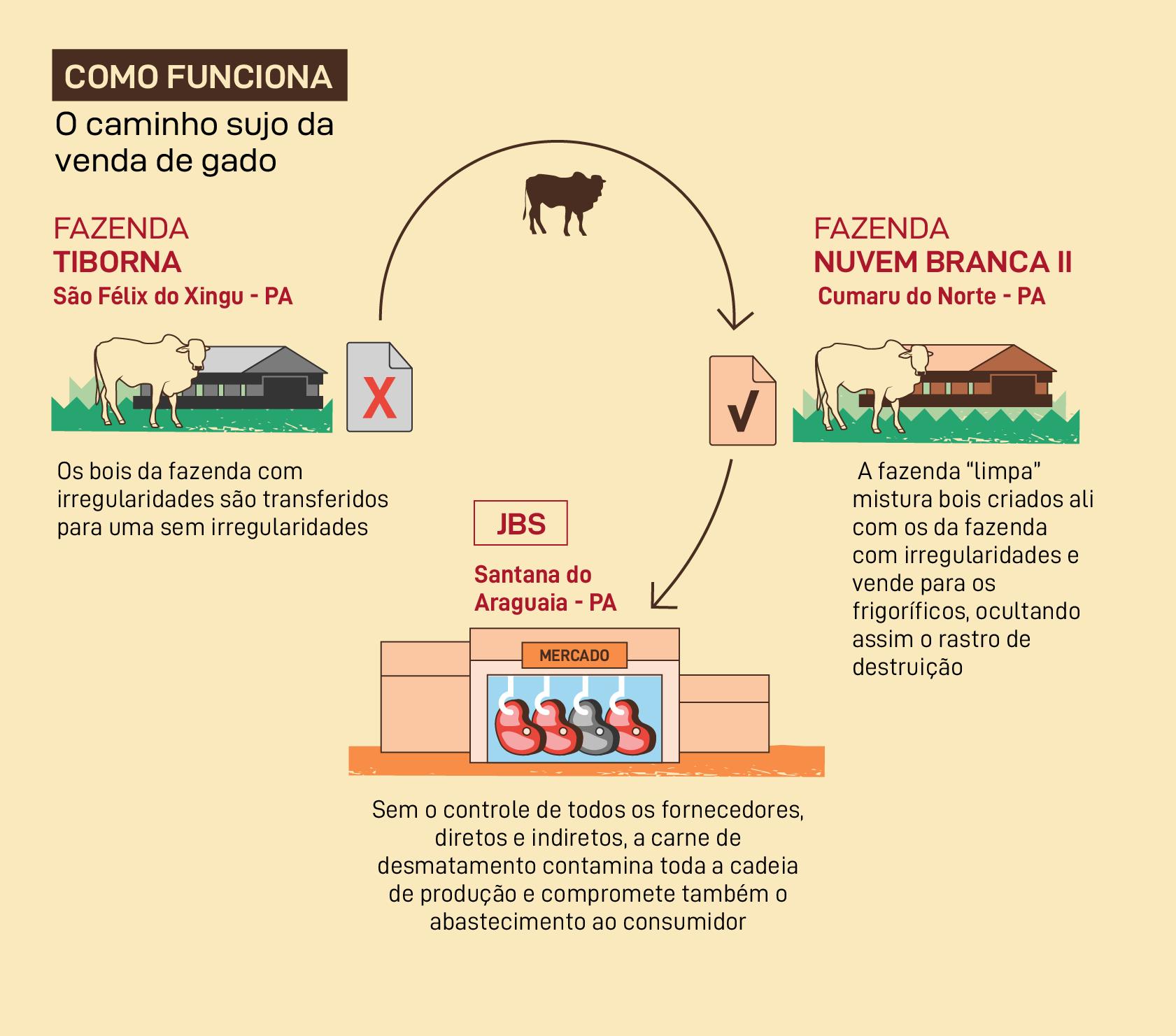 Como funciona o caminho sujo da venda de gado